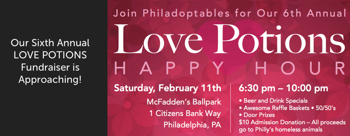 6th Annual LOVE POTIONS Fundraiser