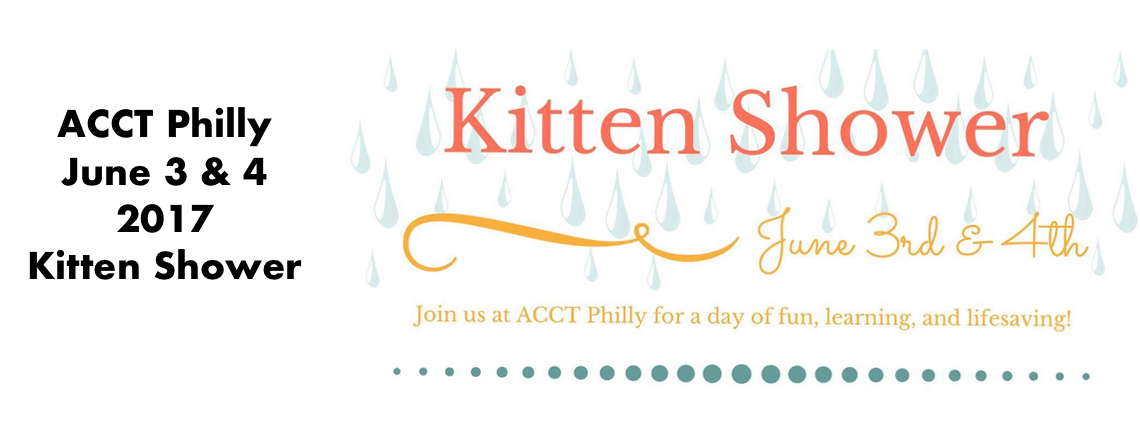Come to Our Kitten Shower June 3 & 4