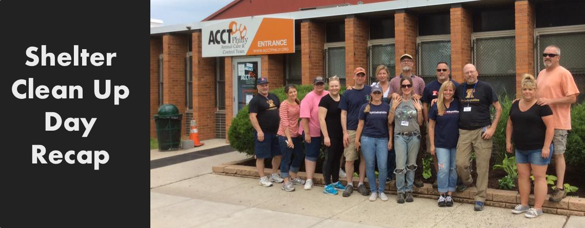 Shelter Clean Up Day Recap