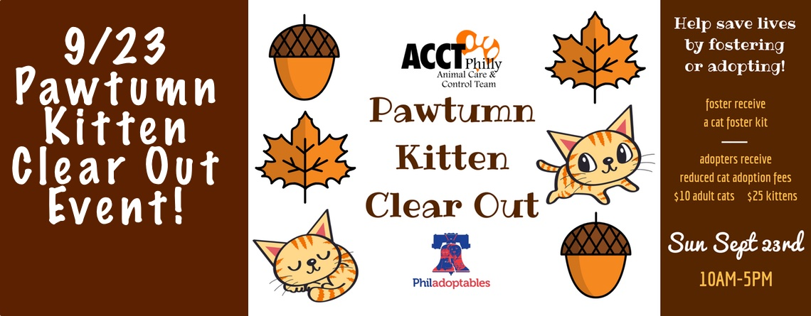 9/23 Pawtumn Kitten Clear Out Event!