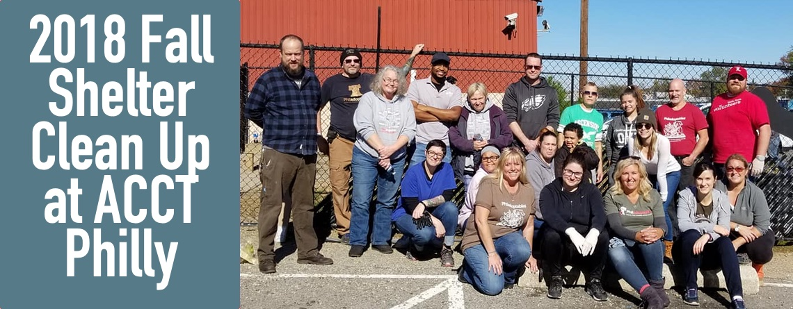 2018 Fall Shelter Clean Up at ACCT Philly