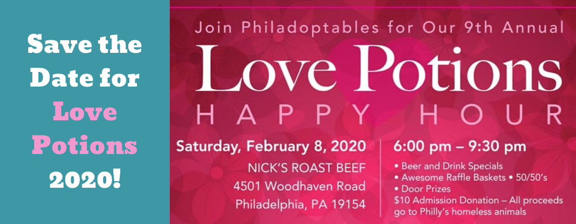 Save the date for Love Potions 2020!