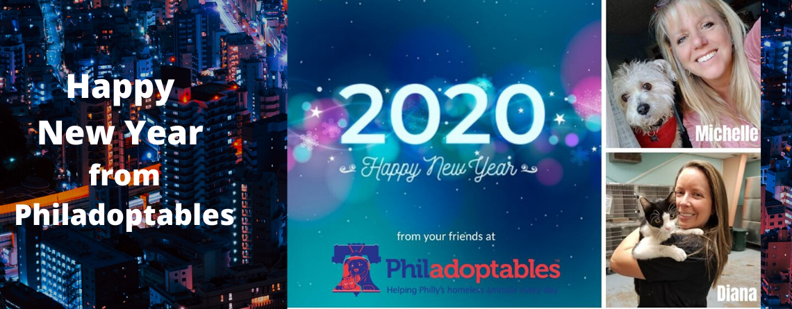 Happy New Year from Philadoptables